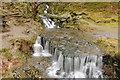 SN9165 : Waterfall on Nant Dolfolau by Philip Halling