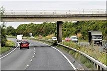 TL4662 : Westbound A14, Bridge at Milton Junction by David Dixon