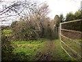 ST5982 : Community Forest Path near Almondsbury by Derek Harper