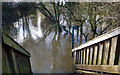 SU7671 : Underwater Walkway 2 by Des Blenkinsopp