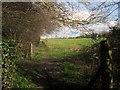 ST5982 : Paths at Pegwell Brake by Derek Harper