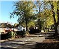 SO4693 : Tree-lined Sandford Avenue, Church Stretton by Jaggery