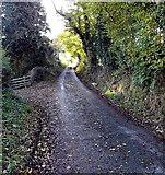 SO4693 : Lane south from Hazler Road near Church Stretton by Jaggery