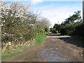 TM1799 : View along Poorhouse Lane by Evelyn Simak