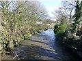SD5527 : River Darwen From Darwen Bridge by Rude Health