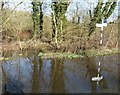 SP9501 : Flood at Pednor Road junction with Drydell Lane by Rob Farrow