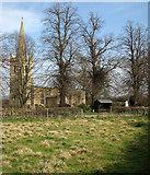 SK8707 : Egleton: winter trees and St Edmund's Church by John Sutton