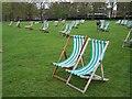 TQ2880 : Deckchairs in Green Park by David Martin