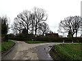 TM2398 : Wood Lane, Shotesham by Geographer
