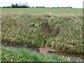 TF2117 : Damaged dike bank on Deeping Fen by Richard Humphrey