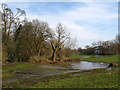 TL1406 : Flooded land, Verulamium Park by Stephen Craven