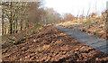 J3268 : New path, Minnowburn, Belfast (5) by Albert Bridge