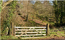 J3268 : Wooden gate, Minnowburn, Belfast by Albert Bridge