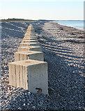 NJ3265 : Tank Traps by Anne Burgess