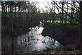 NY6127 : Flooded gypsum mine workings, Acorn Bank by Ian Taylor