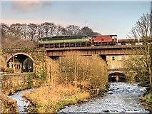 SD7915 : Brooksbottoms Viaduct by David Dixon