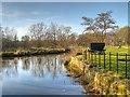 SJ5396 : St Helens (Sankey) Canal, Stanley Bank by David Dixon