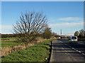NZ4028 : Hartlepool Road, A689 by Pauline E