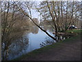 SP2200 : Private fishing lake, Lechlade Trout Farm by Vieve Forward