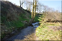 SS9531 : West Somerset : Pulham River by Lewis Clarke