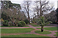 SX8861 : Gardens of Oldway Mansion by Richard Dorrell