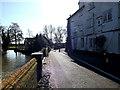 TM3691 : Mill Pool Lane, Ellingham by Adrian Cable