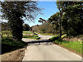 TM3793 : School Road, Kirby Cane by Adrian Cable