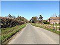 TM3793 : Church Road, Kirby Cane by Adrian Cable