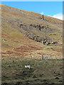 NT1025 : Rocky hillside above Glenveg by Oliver Dixon