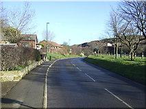 NZ7119 : Mill Lane by JThomas