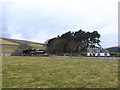 NT1133 : Wrae Farm by Oliver Dixon