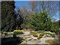 TQ3976 : Rock garden, Greenwich Park by Stephen Craven