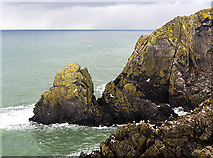 NW9954 : Rocky shoreline north of Portpatrick by William Starkey
