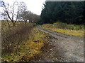 H0987 : Laneway at Meenbog by Dean Molyneaux