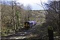 SO6204 : Dean Forest Railway by Stuart Wilding
