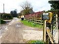 SU6937 : Road becomes bridleway at Chawton Park Farm by Shazz