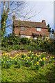 TQ2550 : Castle Cottage by Ian Capper