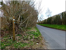 SU7037 : Footpath junction on Chawton Park Road by Shazz