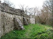 SH6179 : Castell Aberlleiniog by David Purchase