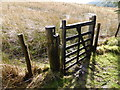 SH9406 : Gate at the forest's edge on Glyndwr's Way by Jeremy Bolwell