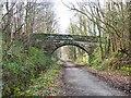 NZ1557 : Derwent Walk at Low Friarside by Oliver Dixon