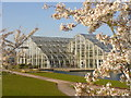 TQ0658 : Wisley - Glasshouse by Colin Smith