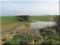 SE7564 : Waterlogged farmland by Pauline E