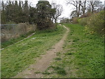 TQ2157 : Footpath to Epsom Downs by Rosebery Road by David Howard