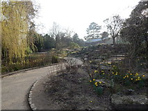 TM1645 : Path and rock garden in Christchurch Park by Hamish Griffin
