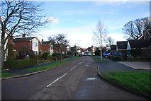 TM1551 : Gascoigne Drive by N Chadwick