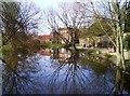 TQ5387 : Langtons House Lake by Des Blenkinsopp
