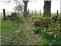 SE0420 : Birks Lane, Ripponden FP59 by Humphrey Bolton