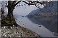 NY3817 : Ullswater shore by Ian Taylor