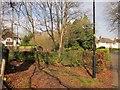 ST5575 : Path, Sneyd Park by Derek Harper